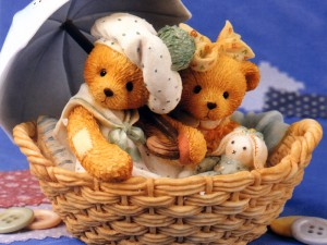 cute teddy bear pictures