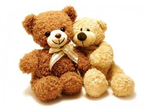 free teddy bear pictures