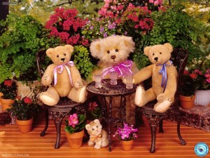 teddy bear pictures free